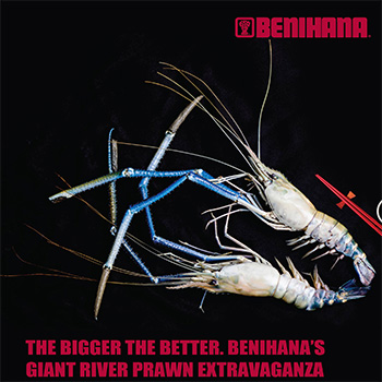 Benihana_Shrimps_small