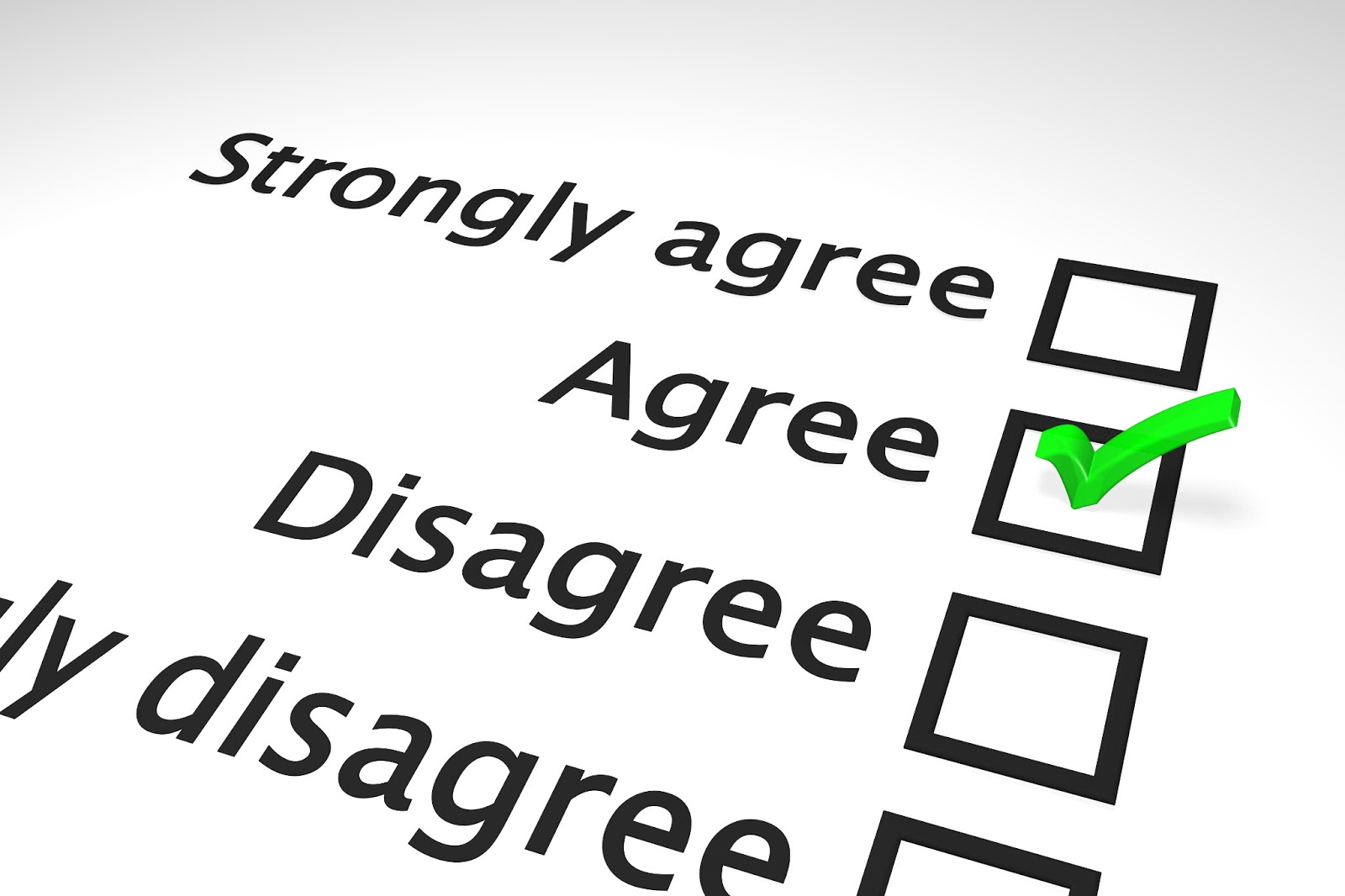 SurveyAgreeDisagree