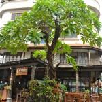 Cucumber Inn Suites & Restaurant