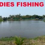 Freddies Fishing Park