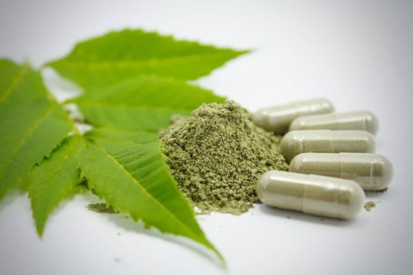 green-tea-extract-powder-and-capsules