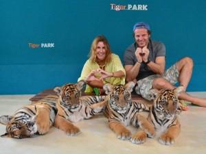 tiger-park-4-1024x768